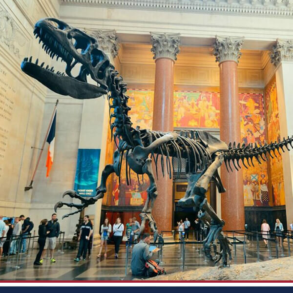 Amerikan Doğa Tarihi Müzesi